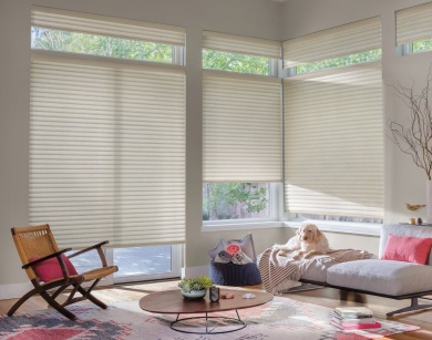 Blinds Brite sells Hunter Douglas Blinds